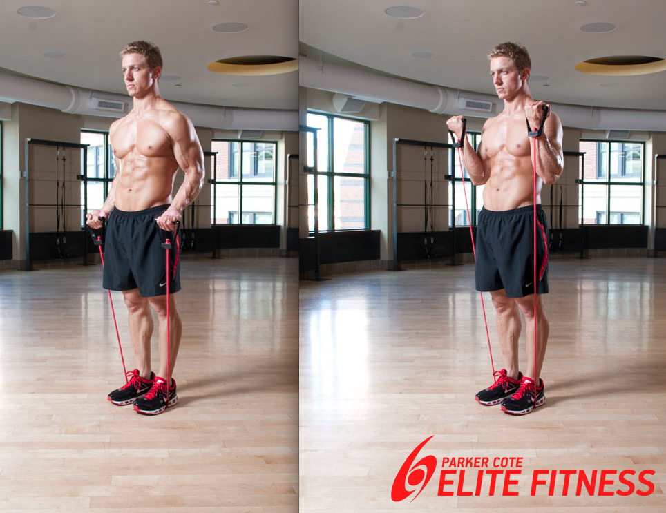 full body resistance band workout pdf